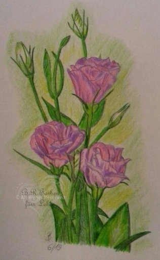 Blumen Buntstift A4