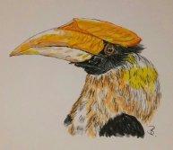 Doppelhornvogel A5 (A4)