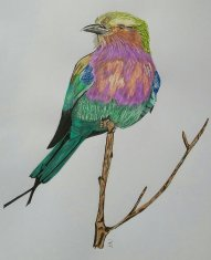 Gabelracke A4 Kunstdruck