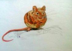 Feldmaus, A4 Original Inkpen und Bleistift unverkäuflich