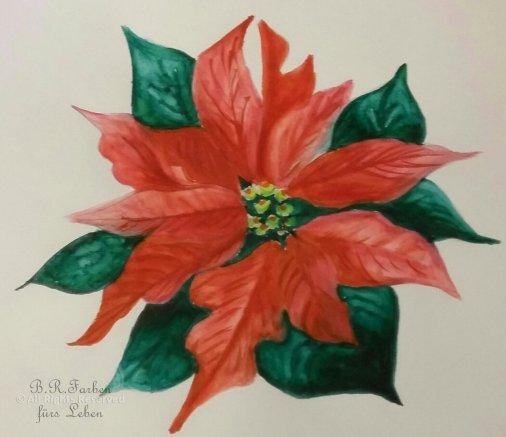 Weihnachtsstern A5 unverkäuflich