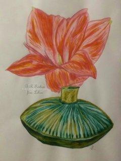 Vase mit Amaryllisblüte