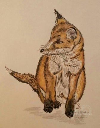 Fuchswelpe A5