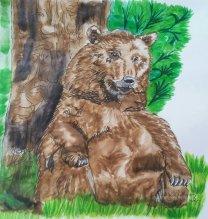 Braunbär Seele des 1waldes