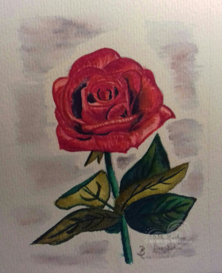 Rose Aquarelle