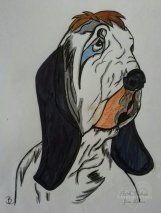 Ahne von Droopy