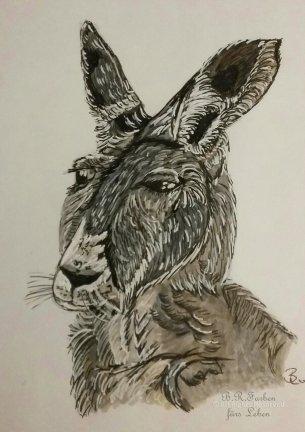 Känguru A5